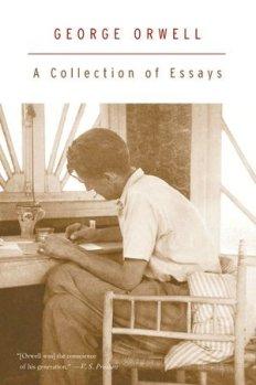 orwell essays.jpg